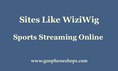 Wiziwig.Com
