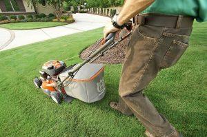 Fuel Lawn Mowers